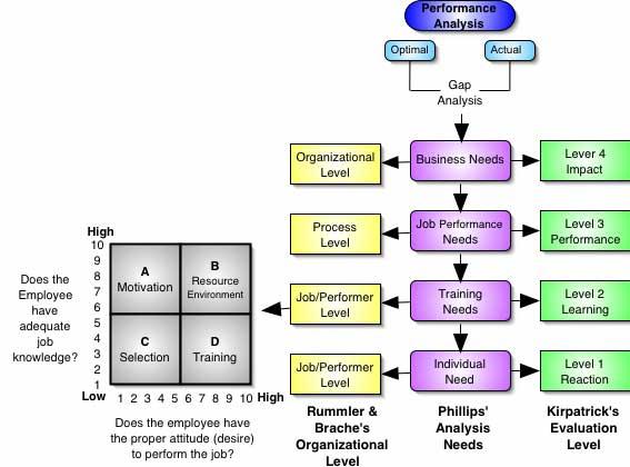 el problema de la organizacion: