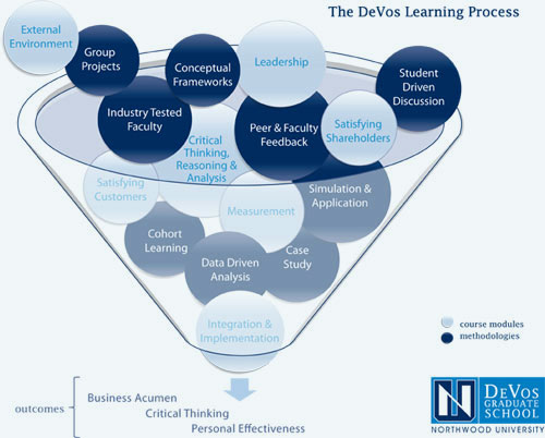 DeVos-Learning-Process