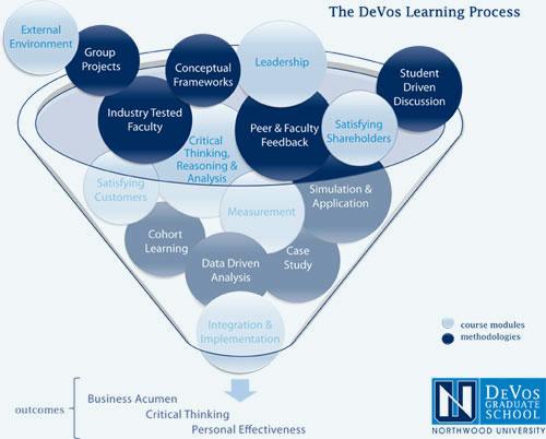 DeVos-Learning-Process