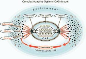 que-es-un-sistema-adaptativo-complejo-R-cUWjkm