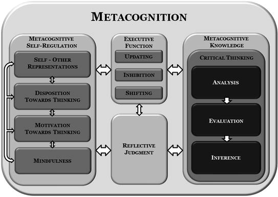Figure-2-2-An-integrated-model-of-metacognition