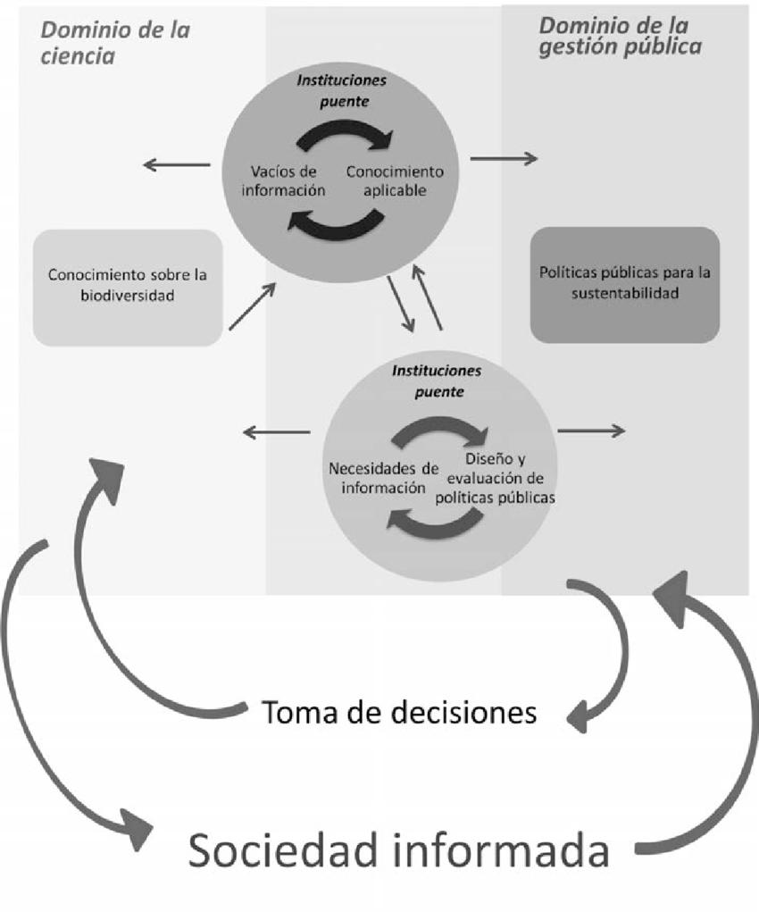 Figura-4-Modelo-de-retroalimentacion-entre-la-generacion-de-conocimiento-y-los-tomadores