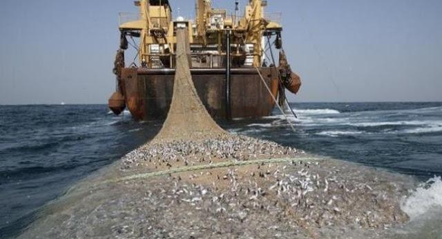 pesquero_1