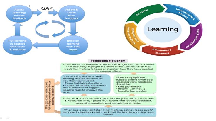 feedback-principles