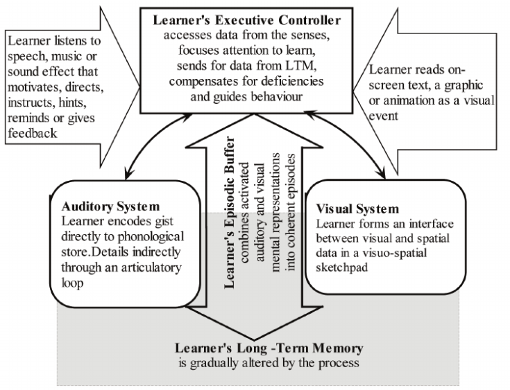 The-attentional-control-theory-of-multimedia-learning-Adapted-from-Mann-2008a