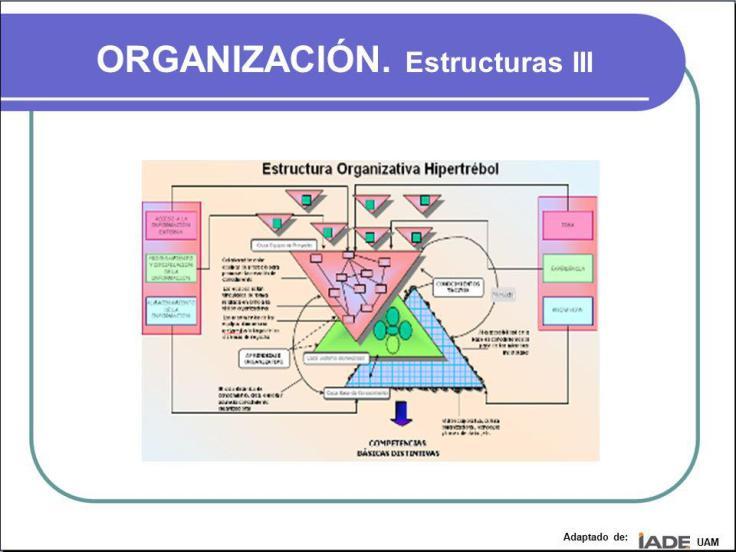 ORGANIZACIÓN.+Estructuras+III