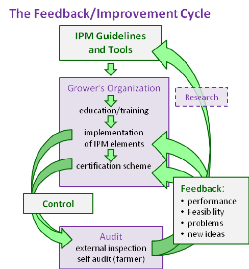 The-feedback-Improvement-cycle
