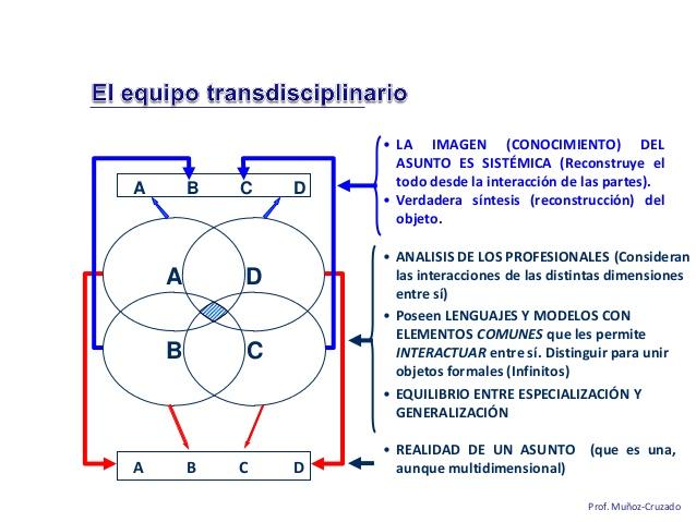 la-importancia-del-equipo-transdisciplinar-en-salud-mental-miguel-muozcruzado-y-barba-27-638
