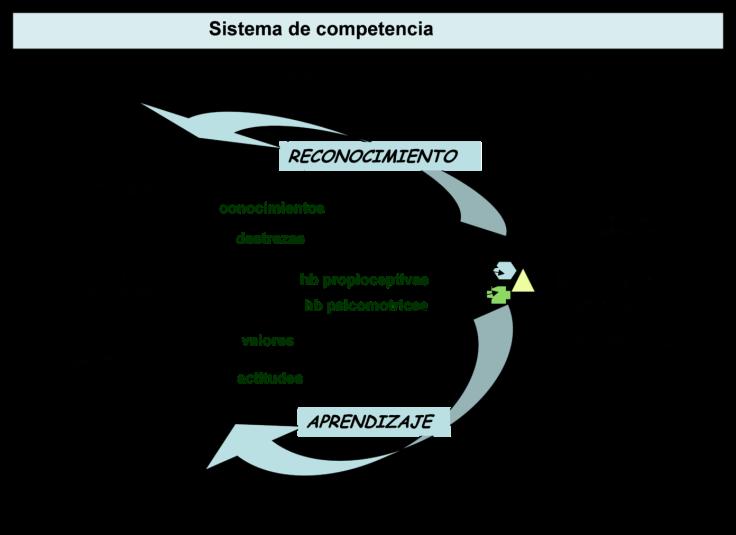 Competencia-01-1392x1012
