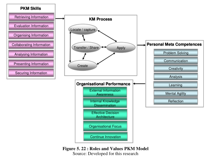 PKM-Roles-Values-Ricky-Ceong-2011