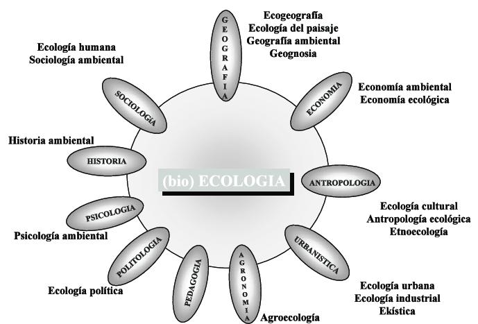 Figura-1-La-interseccion-de-10-areas-de-conocimiento-con-la-ecologia-biologica-ha-dado