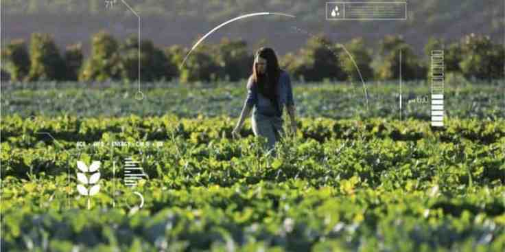 Generic_agriculture_AI_16012018